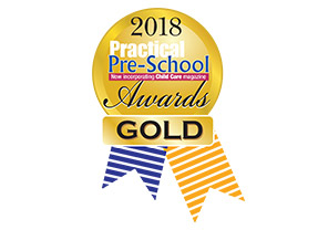 Practical Pre-School Awards Gold Award
